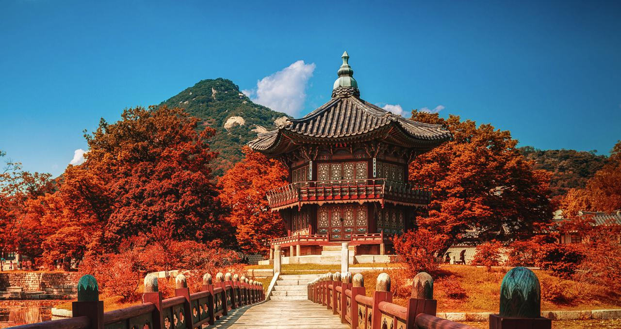 Korea Tour Operator List
